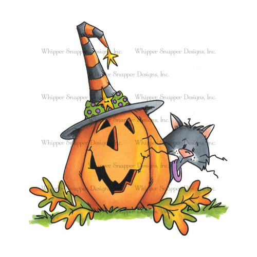 Whipper Snapper Designs - Peek & Boo Cling Mounted Rubber Stamp (MY646)