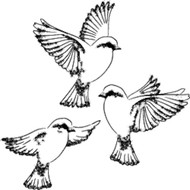 Memory Box - Cling Stamp - Three Little Birds