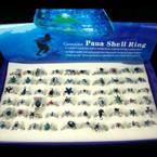 Genuine Paua Shell Rings 60 pc display bx .40 EA