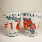 # 1 DAD Florida License Plate Style Shot Glass 12 per bx  .35 each  ON SALE