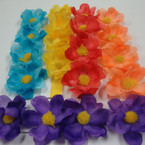 Popular Bright Color 4-Flower Headband w/ Colored Band .52 ea