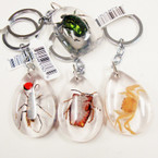 "Popular 2"" Acrylic BUG Keychains Mixed Bugs  12 per pk .54 each"