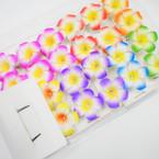 "2 Pack 2.5"" Asst Color Hawaiian Style Flower  Gator Clip  Hair Bows 12-2 pks per bx"