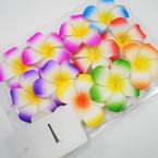 """4"""" Asst Color Hawaiian Style Flower  Gator Clip  Hair Bows w/ Stone .55 each"""