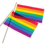 "4"" X 6"" Plastic Rainbow Flags 12 per pk .11 each"