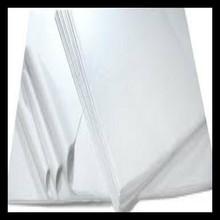 Tissue Paper - White