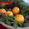 Idea of how to use Box of Greens for an aromatic Christmas decoration. Just add oranges, cloves, and cinnamon sticks.