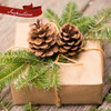 Idea of how to use Box of Greens to decorate a Christmas present