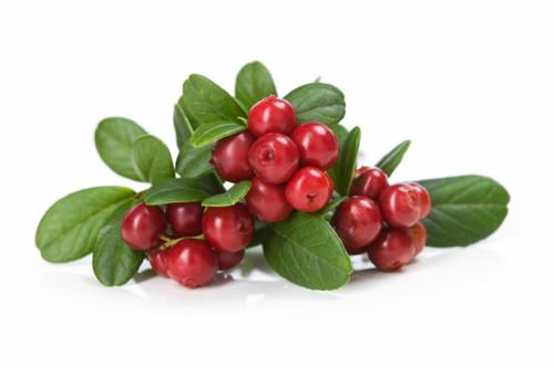Cranberry Balsamic