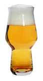 Rastal Master One Personalized Beer Glass