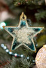 Holiday Star Ornament