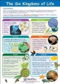 Environmental Science and Classification