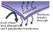 stretch-knit-membrane-flow.jpg