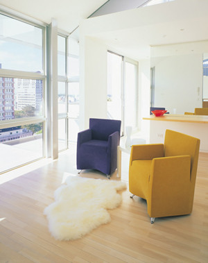Sheepskin Specials: Autumn Lamb Single Pelt Longwool Rugs 38in x 22in