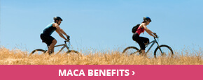 maca-benefits-290x115.jpg