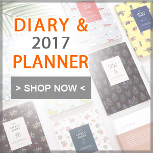 2017 diary and planner - fallindesign