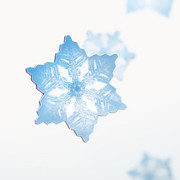 Appree Snow flower magnet set