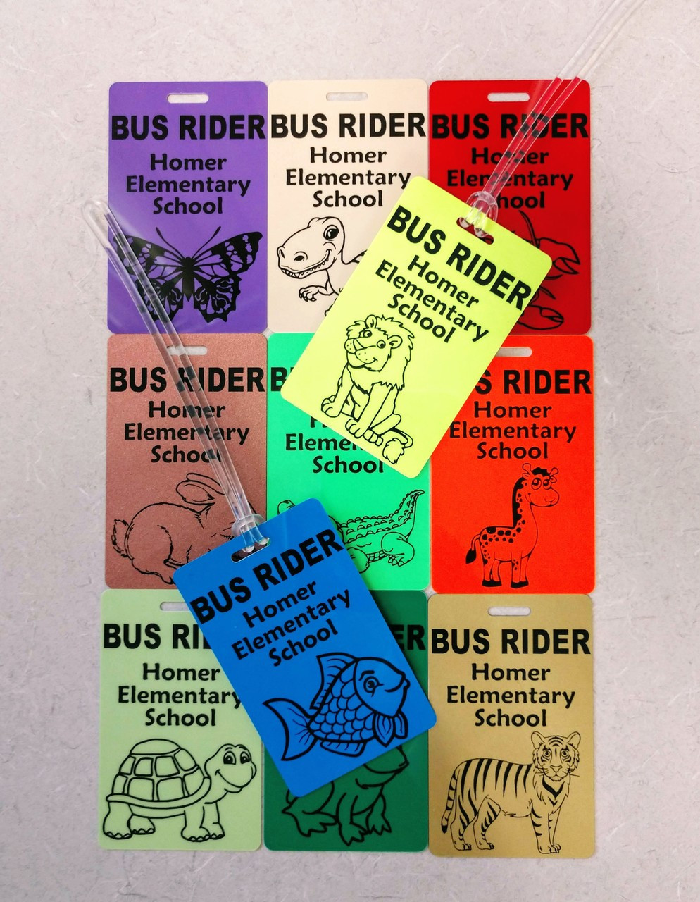 Route your buses with Animal Names?