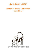 Letter to Every Cat Owner from Cats