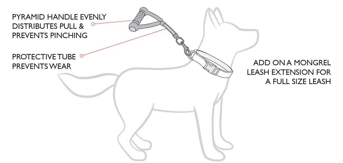 mongrel-leash-diagram.jpg