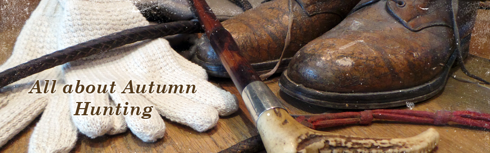 All about Autumn Hunting
