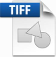 tiff.jpg