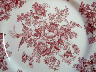 Pink Red Toile Rose Exotic Bird Paris Chinoiserie Plate M Round
