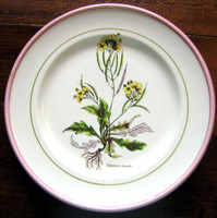 Decorative Plate - Italian Made Botanical Yellow Flower Pink Green Trim Medium