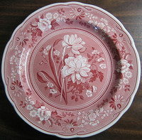 Red Pink Toile Transferware Daffodil Exotic Plate