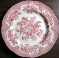 Pink Toile Rose Exotic Bird Paris Chinoiserie Plate Medium