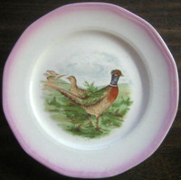 OLD 1924 Pink Edge Pheasant Bird Plate S USA