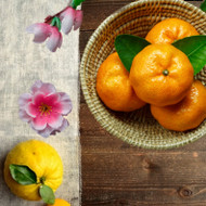 Yuzu and Satsuma Fragrance Oil