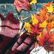 Autumn Flannel Fragrance Oil