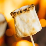 Fire Roasted Marshmallows Fragrance Oil