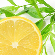 Lemon Verbena Fragrance Oil