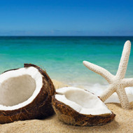 Coconut Bliss Fragrance Oil