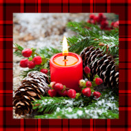 Holiday (Type) Fragrance Oil