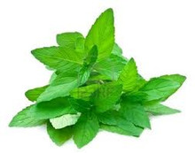 Green MInt .. strong and American