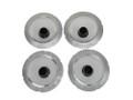 Gauge Cluster Lens Set 66-67 Charger