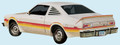 1978 Road Runner Decal & Stripe Kit