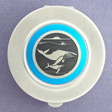 Whale Compact Pill Case - Large