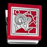 Ram Magnet Clip