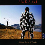 Pink Floyd - Delicate Sound Of Thunder (Live) (2016 Reissue) 2CD