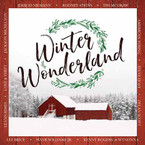 Various Artists - Winter Wonderland CD