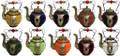 Decorative Ceramic Teapot CER02