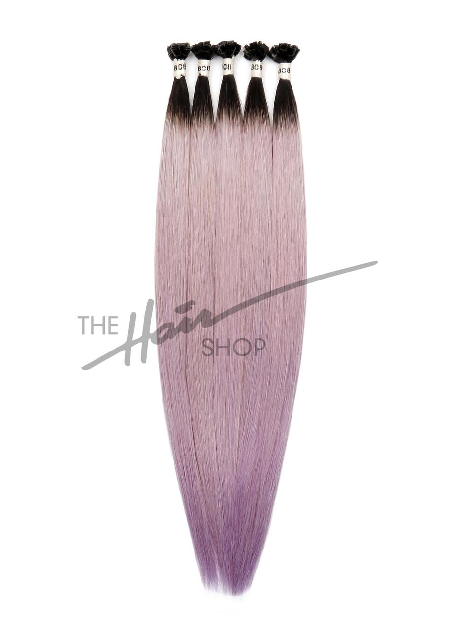 T1B/PA.Lavender