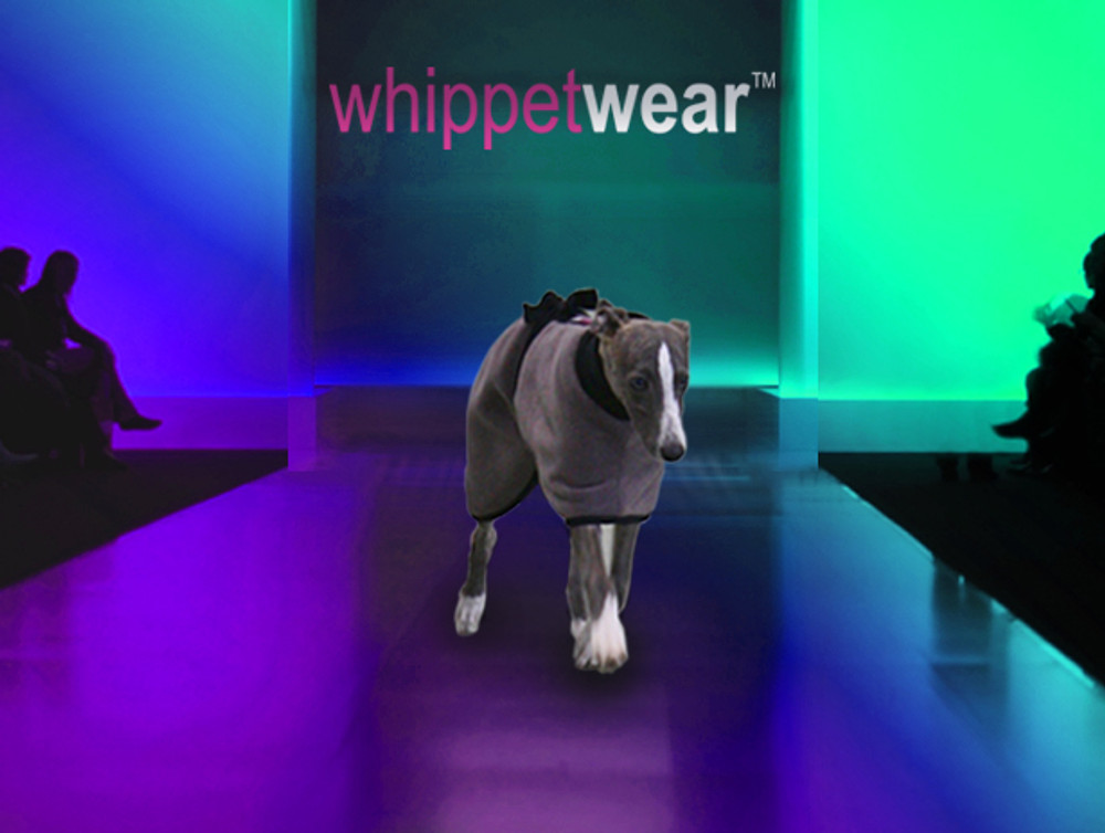 Whippet Coat for Puppy