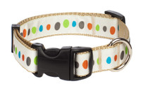 City Slicker Dog Collar - Dino Rocks