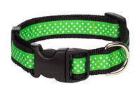 Pembroke Polka Dot Dog Collar-Lime Green
