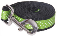 Pembroke Polka Dot Dog Leash-Lime
